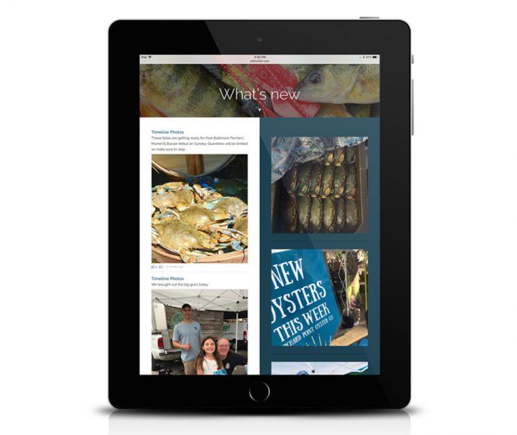 old line fish website on ipad